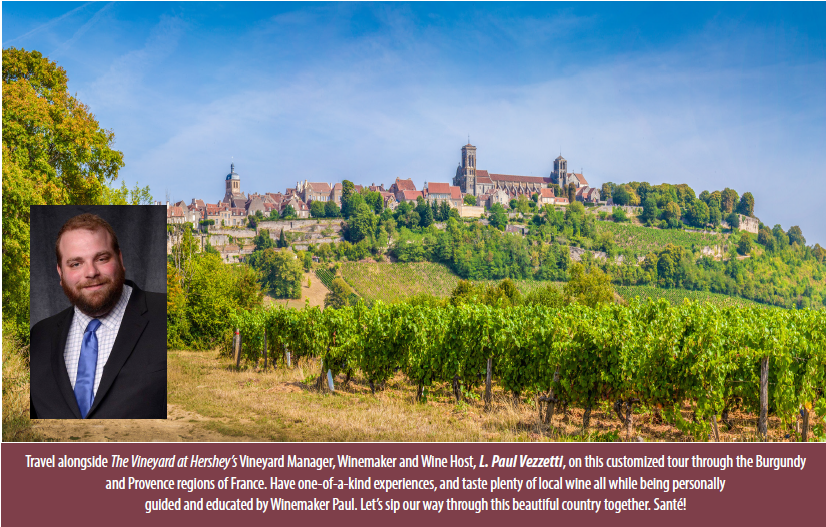 Famous Burgundy region of France & L. Paul Vezzetti [2021]