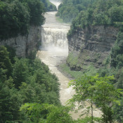 Travel - Photo Contest - Letchworth State Park 65