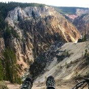 Travel - Photo Contest - Life Yellowstone 75